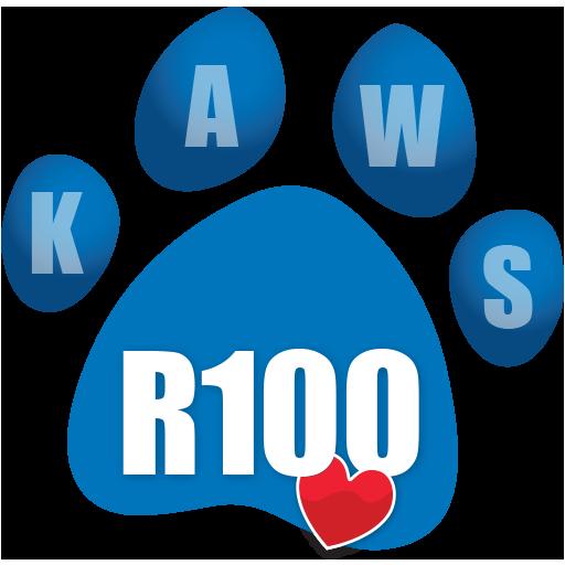 Donate R100 icon