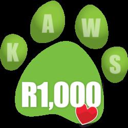 Donate R1000 icon