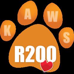 Donate R200 icon