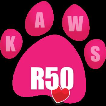 Donate R50 icon