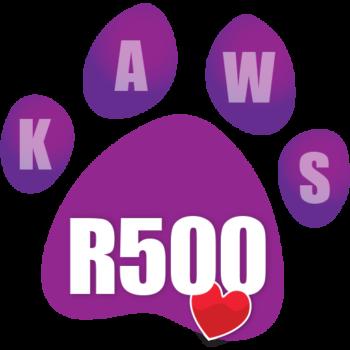 Donate R500 icon